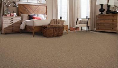 carpet-cat